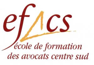 logo-EFACS