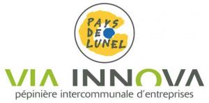 logo-Via-Innova