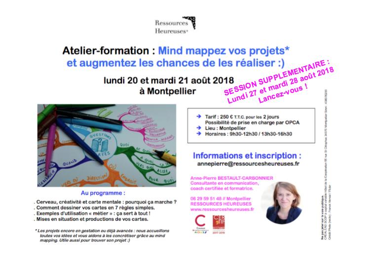 Mindmapper-Projet-aout2018-APCarbonnier