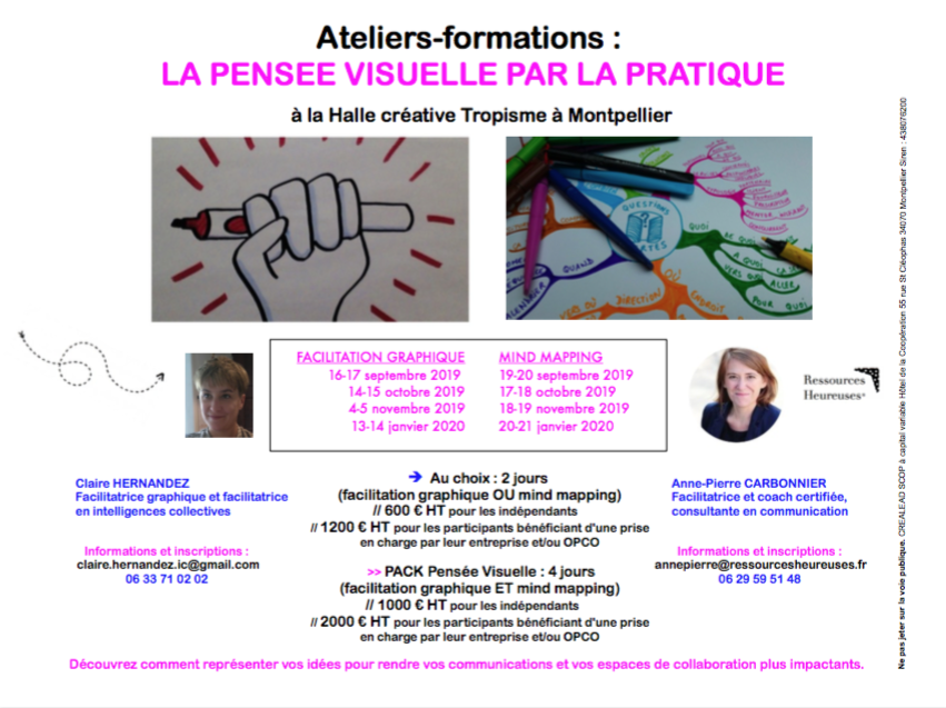 formation-pensee-visuelle-mind-mapping-facilitation-graphique